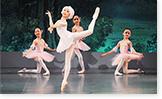 スガナミ楽器 カルチャー教室 バレエ
