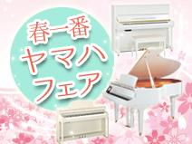 haru-ichiban_s