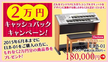 2万円キャッシュバックキャンペーン!2015年6月末までにエレクトーンステージアミニELB-01をご購入の方に、もれなく2万円分の商品券をプレゼント!