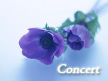concert_nandemo
